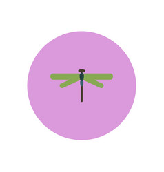 Stylish icon in color circle dragonfly insect vector