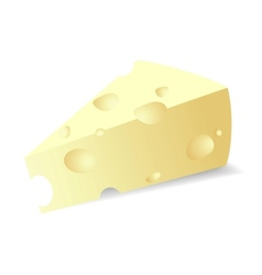 Cheese titbit vector