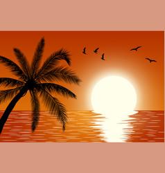 sunset summer sunset landscape vector image