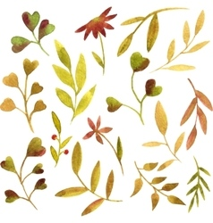 Watercolor green leaves and branches vector