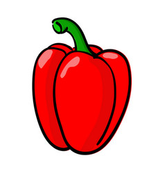 bell pepper colored doodle hand drawn sketch vector image