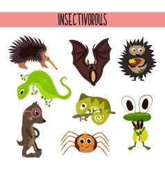 Cartoon set of cute animals insectivores living in vector