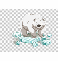 Polar bear on iceberg on transparent background vector