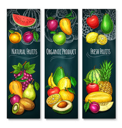 Exotic fresh fruits product banners set vector