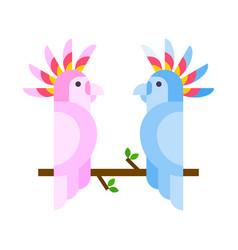 Cartoon tropical parrot wild animal bird vector