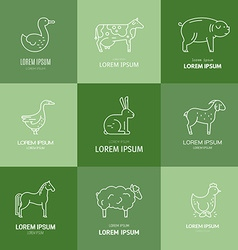 Farm animal icons vector