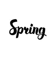 spring handwritten lettering vector image vector image