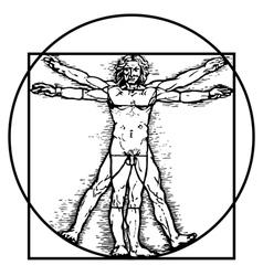 Vitruvian man vector