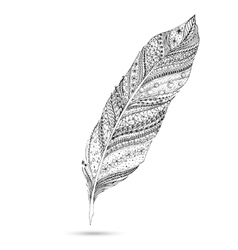 Artistically drawn stylized feather on a white vector