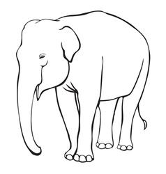 contour elephant vector image