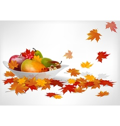 Fruits and autumn leaves on a plate vector image vector image