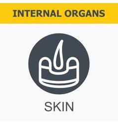 Internal organs - skin vector