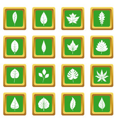 Plant leafs icons set green vector