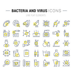 Set flat line icons bacteria and virus vector