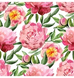 Watercolor peonies pattern vector image vector image