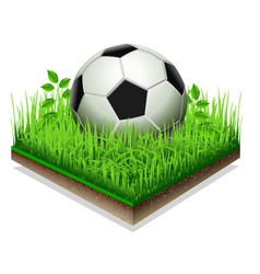 Soccer ball isolated on the grass plate isolated vector