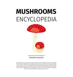 Amanita muscaria mushroom vector