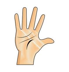 Drawing hand man palm showing five finger vector