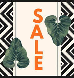 Sale poster with two alocasia zulu mask leaves vector