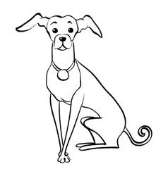 sketch funny Italian Greyhound dog sitting vector image