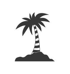 Palm tree icon summer design graphic vector