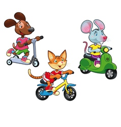 Animals on vehicles vector image