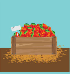 strawberry in a wooden crate vector image vector image