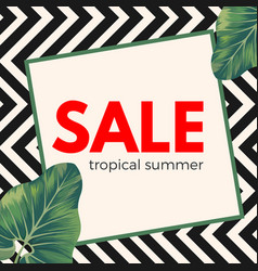 Sale tropical summer poster on ornamental zigzag vector