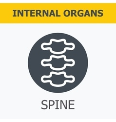 Internal organs - spine vector