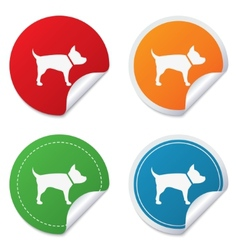 Dog sign icon pets symbol vector