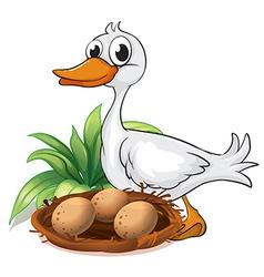 A duck beside her nest vector image vector image
