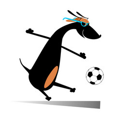 Dog playing football isolated vector