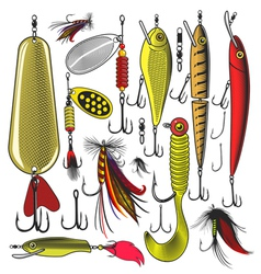 Set of Artificial fishing lures vector image