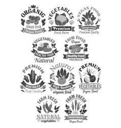 farm veggies or vegetables icons vector image vector image