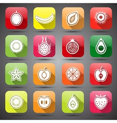 fruits icons4 vector image
