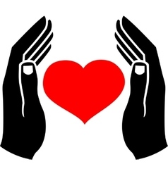 Hands of man and the heart vector image vector image