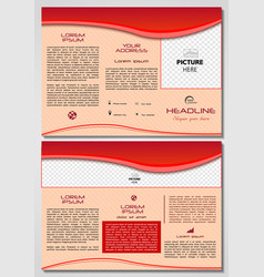 sample marketing brochure