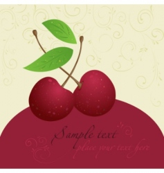 cherry design template vector image vector image