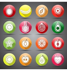 fruits icons5 vector image vector image