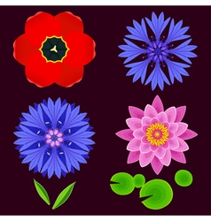 Set of flowers lotus cornflower tulip isolated vector