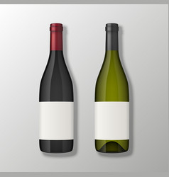 Two realistic wine bottles in top view with vector