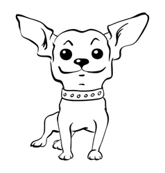 sketch funny chihuahua dog sitting vector image
