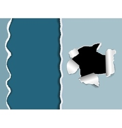 The black torn hole in a white paper vector image