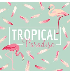 Tropical bird flamingo background summer design vector