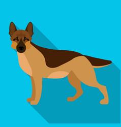Shepherd single icon in flat style dog vector