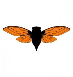 Beautiful cicada vector