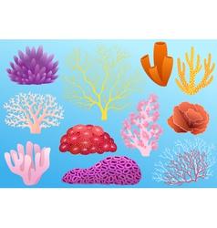 Corals vector