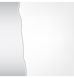 torn sheet vector image vector image