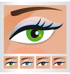 Woman eyes of different colors vector