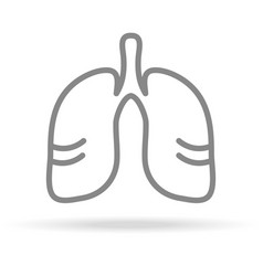 human lungs pulmonology icon in trendy thin line vector image vector image